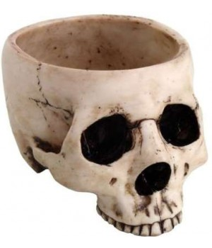 Skull Bowl in Resin Cosplay Costume Closet Halloween Shop Halloween Cosplay Costumes | Kids, Adult & Plus Size Halloween Costumes