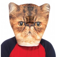 Grumpy Cat Foam Mask