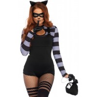 Kitty Cat Burglar Womens Costume