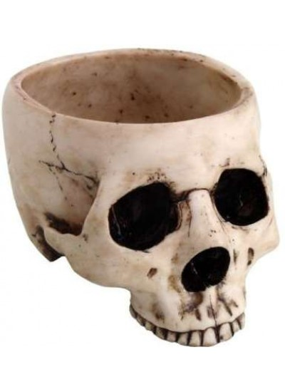 Skull Bowl in Resin at Cosplay Costume Closet Halloween Costume Shop, Halloween Cosplay Costumes | Kids, Adult & Plus Size Halloween Costumes